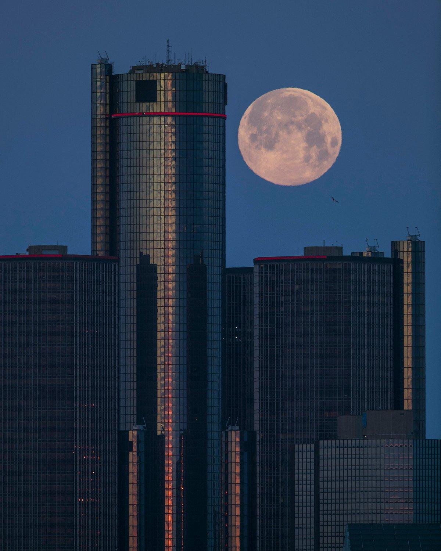 Image of La Luna