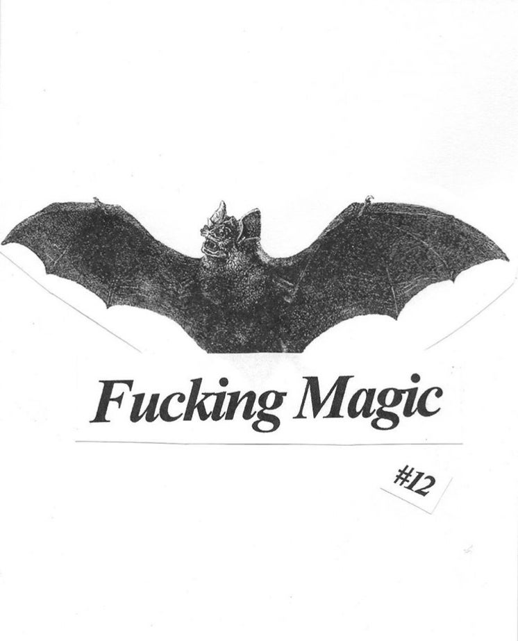 Fucking Magic #12 (Zine)