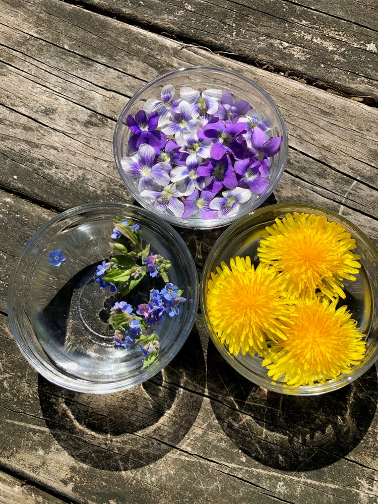 Image of Virtual One Hour Flower Essence Consultation