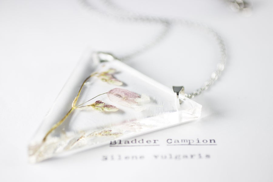 Image of Campion (Silene vulgaris) - Triangular Pendant #1