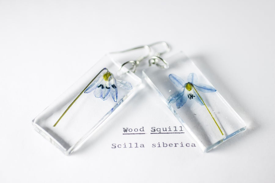 Image of Wood Squill (Scilla siberica) - Pressed Earrings #1