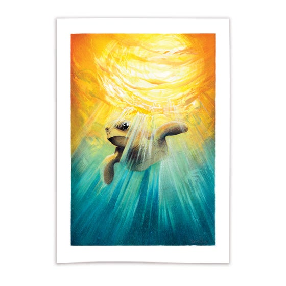 Image of Underwater Sunset - A4 Giclée print