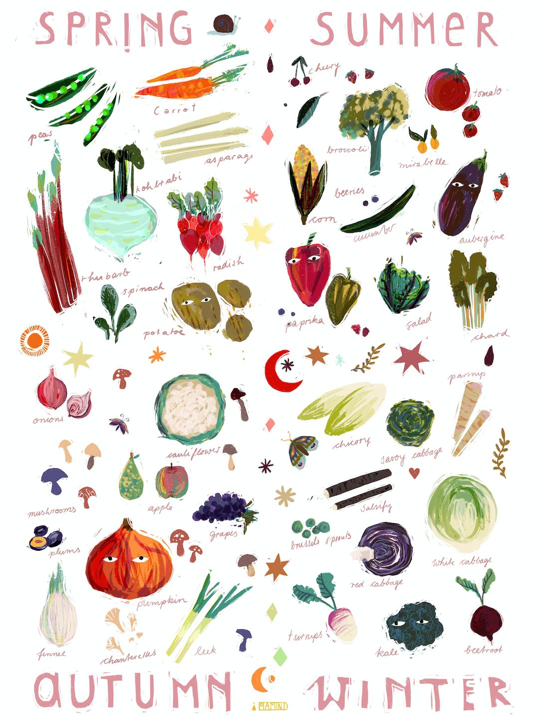 Image of ✹ vegetables seasons calendar ✹
