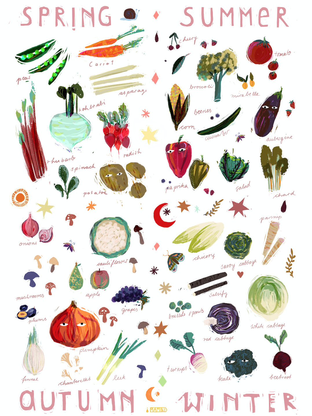✹ vegetables seasons calendar ✹