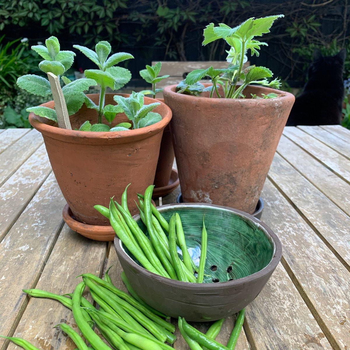 Draining bowl, greenwich green