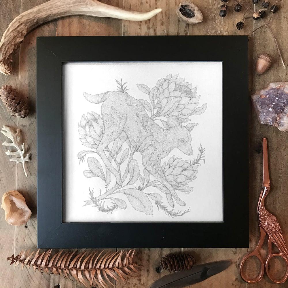 Image of African Wild Dog Original Framed Graphite Drawing