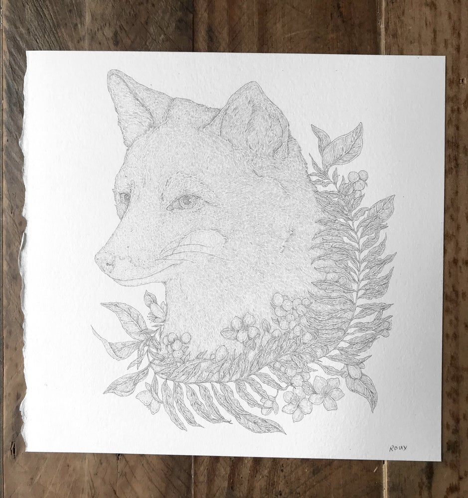 Image of Original Graphite Drawing: Darwin's Fox