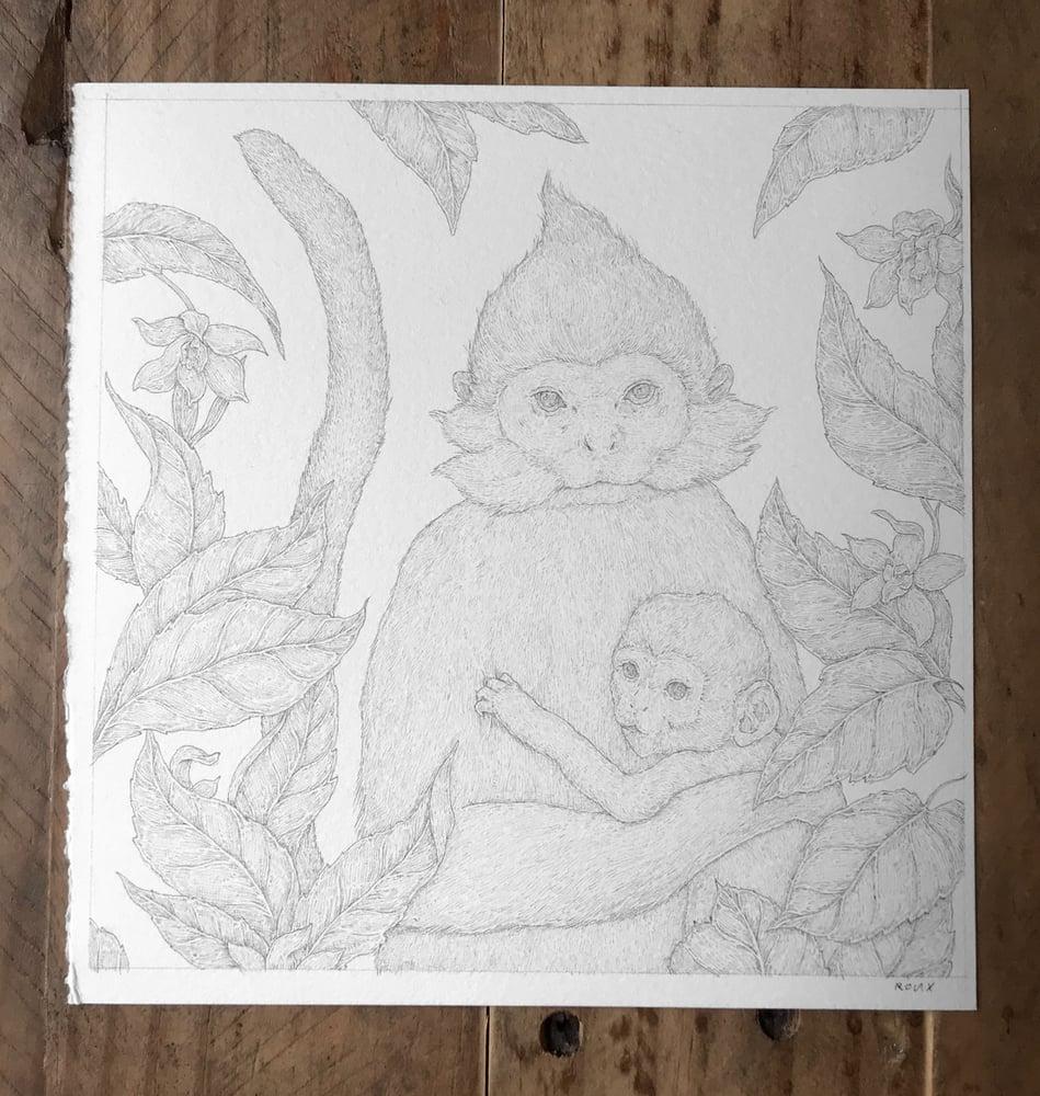 Image of Original Graphite Drawing: Francois' Langur Monkeys