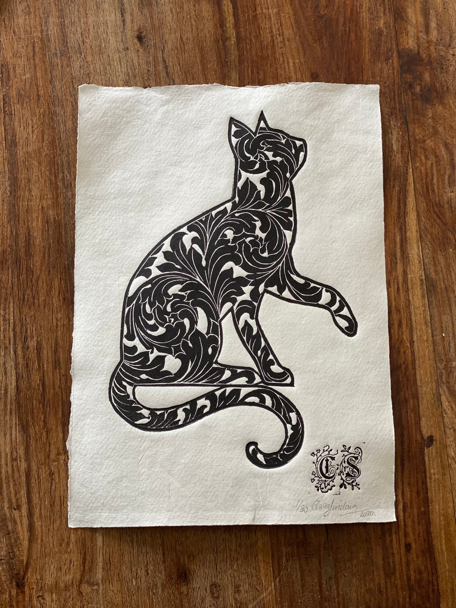 Image of Ornate Cat