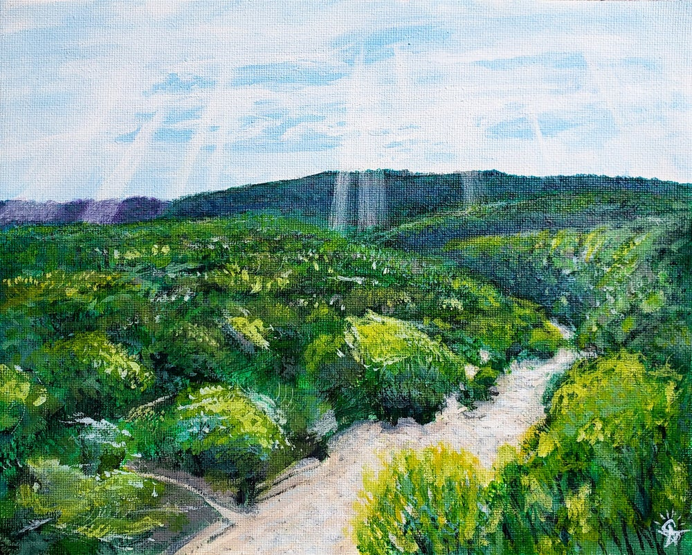 Image of Plein Air Landscape Painting of Barton Creek Greenbelt in May 2020
