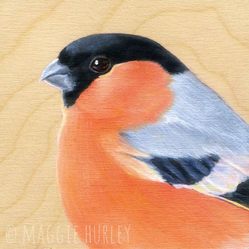 Image of Eurasian Bullfinch Bird Print on Wood by Maggie Hurley