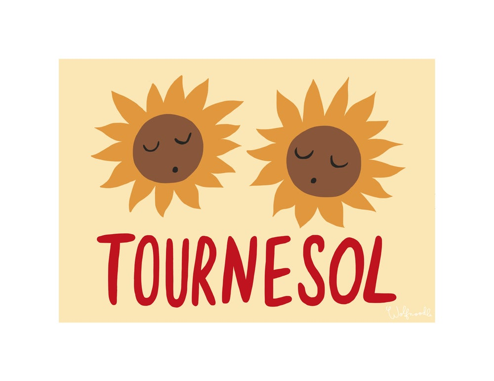 Image of TOURNESOL