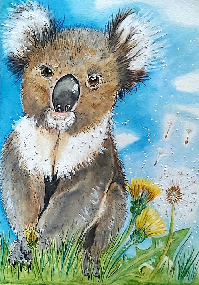 Spirit of the Koala