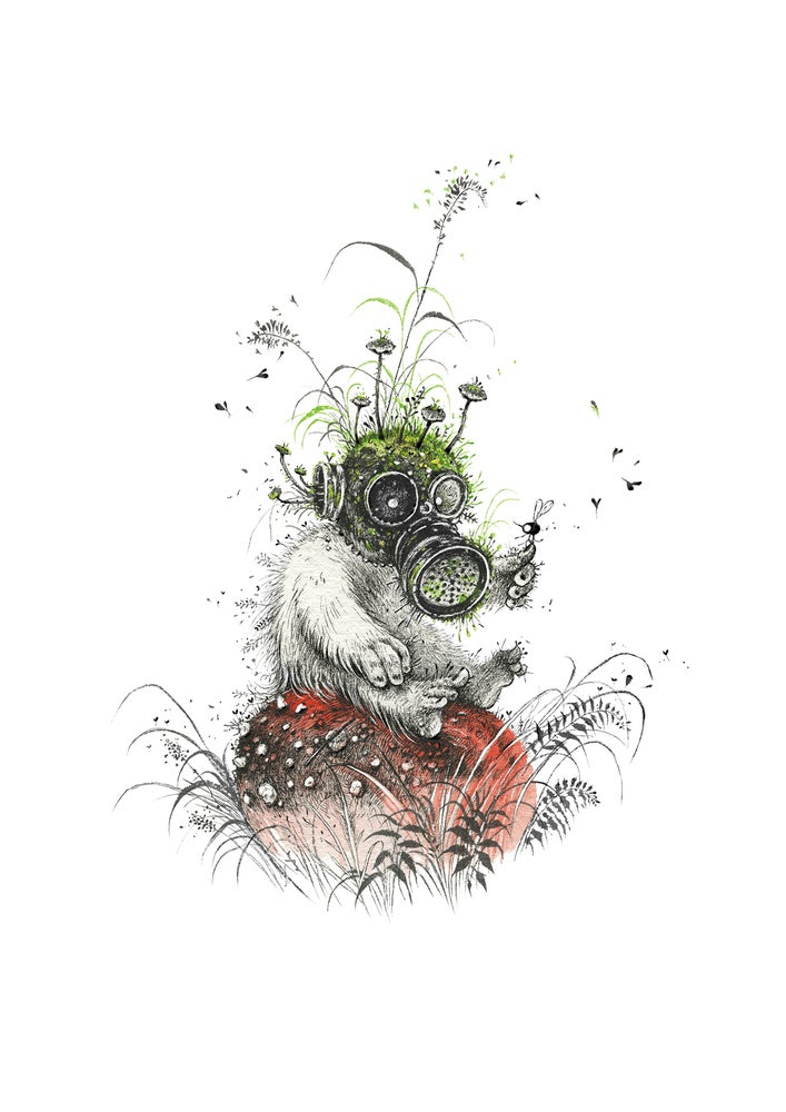 Image of The Entomologist - Limited Edition Print + Stickers