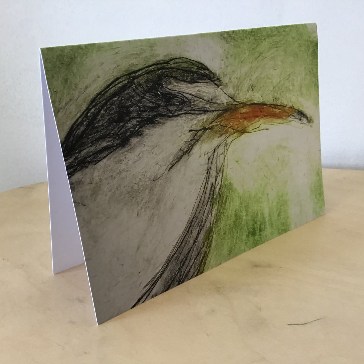 Little Tern Cards - 5 card pack