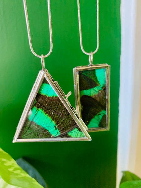 Image of Emerald Swallowtail Butterfly Wing Silver Locket