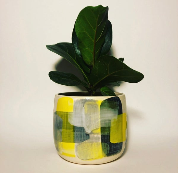 Image of Limoncello Planter