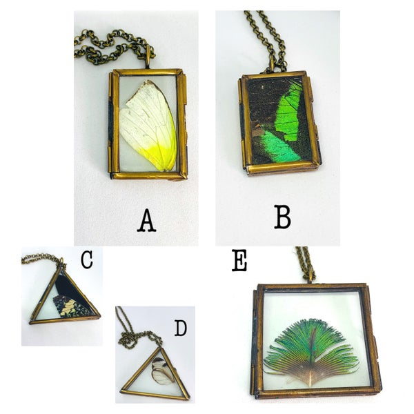 Image of Butterfly Wing Lockets
