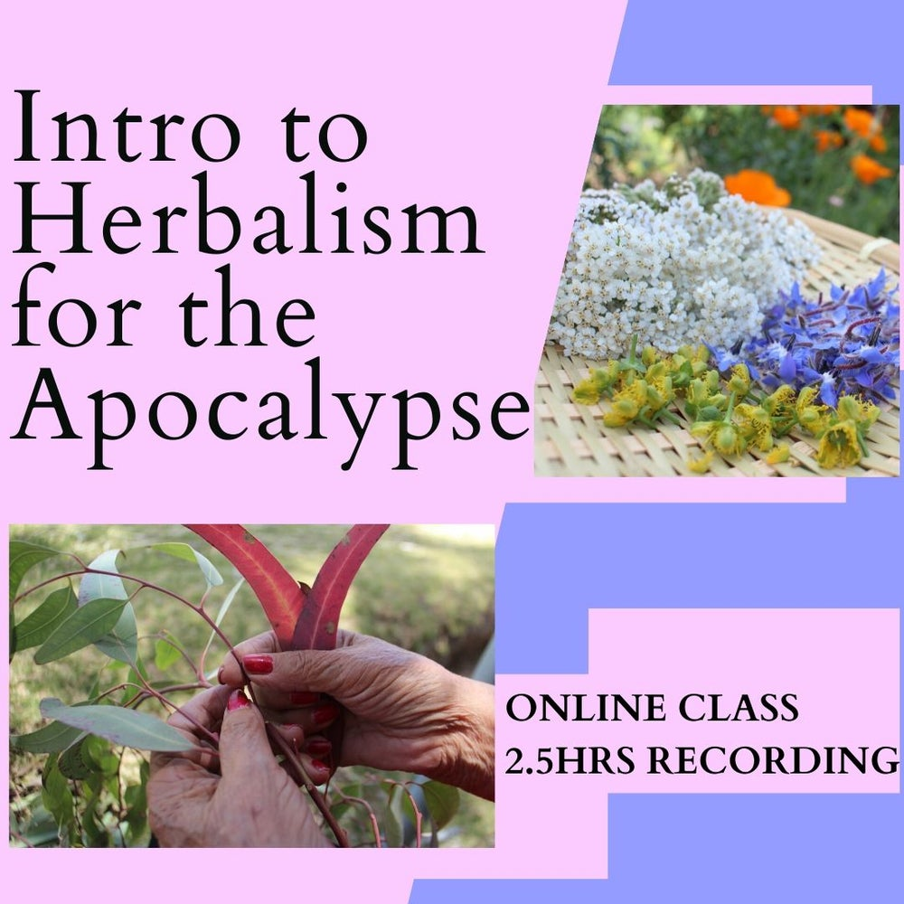 Image of Intro to Herbalism for the Apocalypse E-CLASS