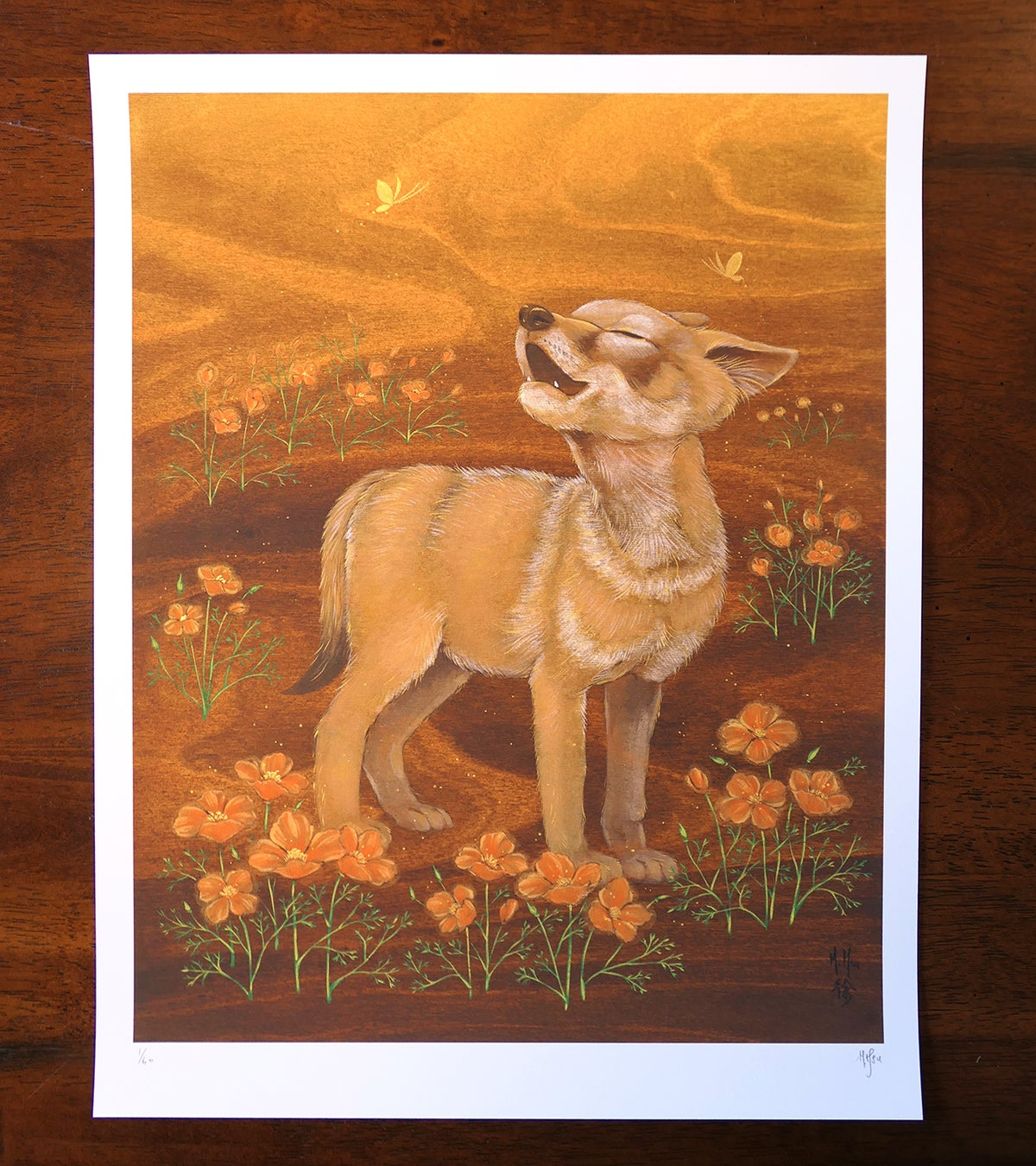 LTD Print - Coyote and Poppies