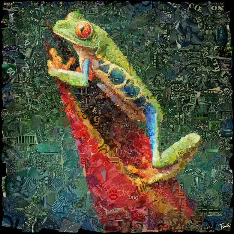 Image of Money Zoo: The Frog