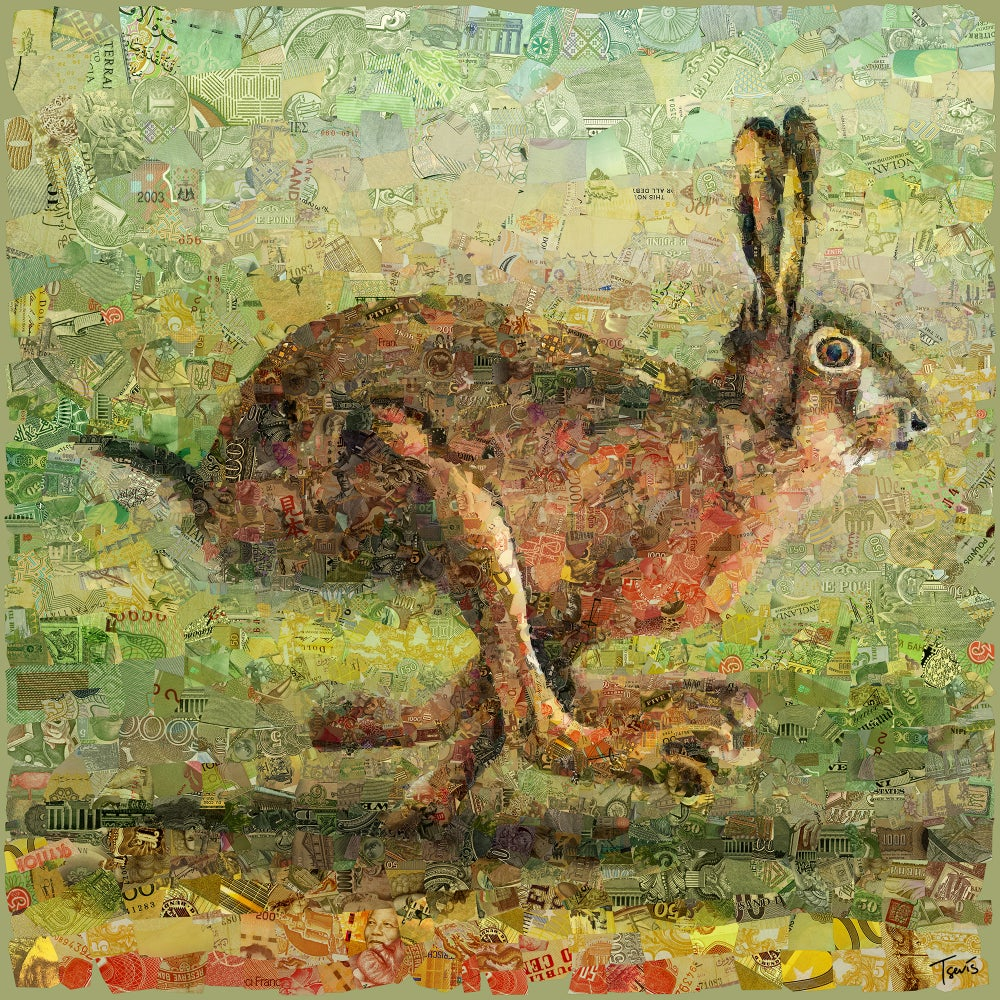 Image of Money Zoo: The Hare