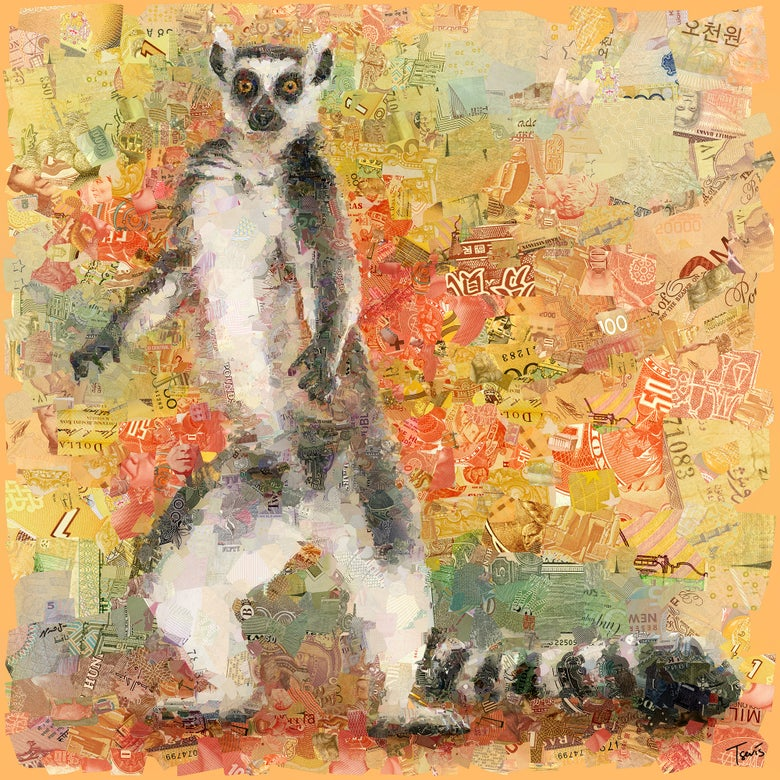 Image of Money Zoo: The Lemur