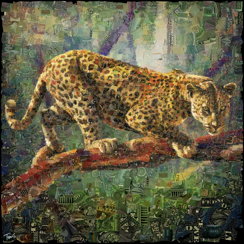 Image of Money Zoo: The Leopard