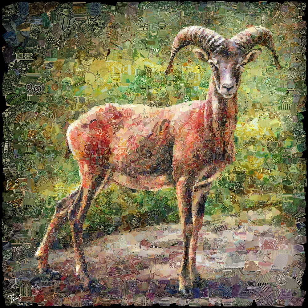 Image of Money Zoo: The Mouflon