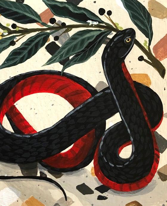 Image of Serpiente y laurel