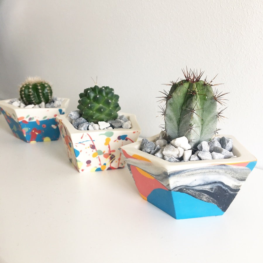 Image of MINI GEO PLANTER