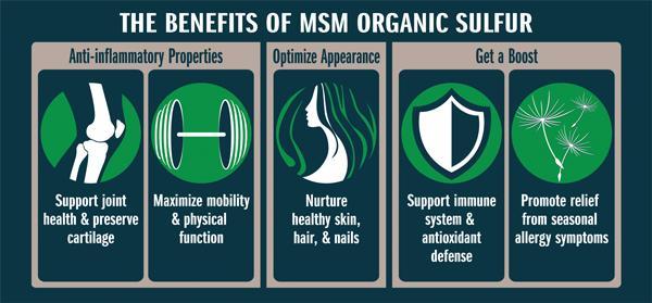 Image of MSM (250g)