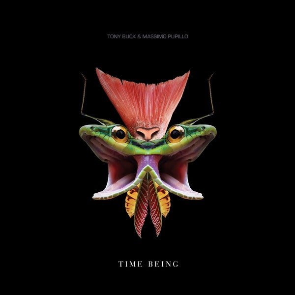 Massimo Pupillo & Tony Buck - Time Being Lp