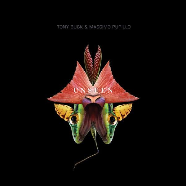 Massimo Pupillo & Tony Buck - Unseen Cd