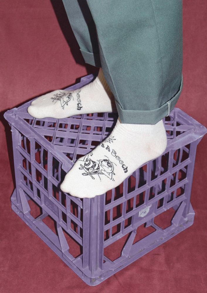Image of Life's A Beech Sock
