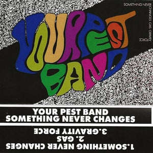Image of Your Pest Band – Something Never Changes (tape)