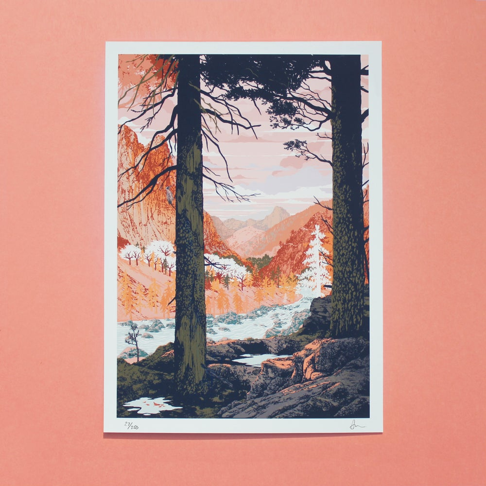Image of Roam Print - 25% of profits goes to Action Against Hunger