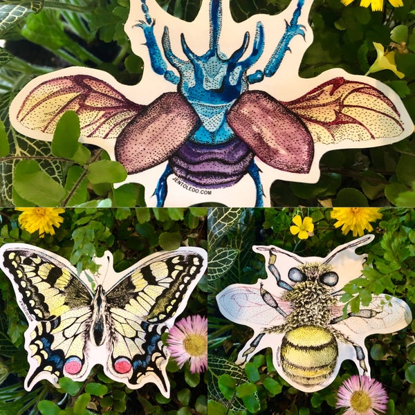 Image of Insect Stickers 🦋 🐝 🐞