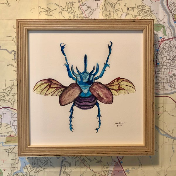 Image of Framed Rhinoceros Beetle Print