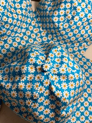 Image of Daisys on blue