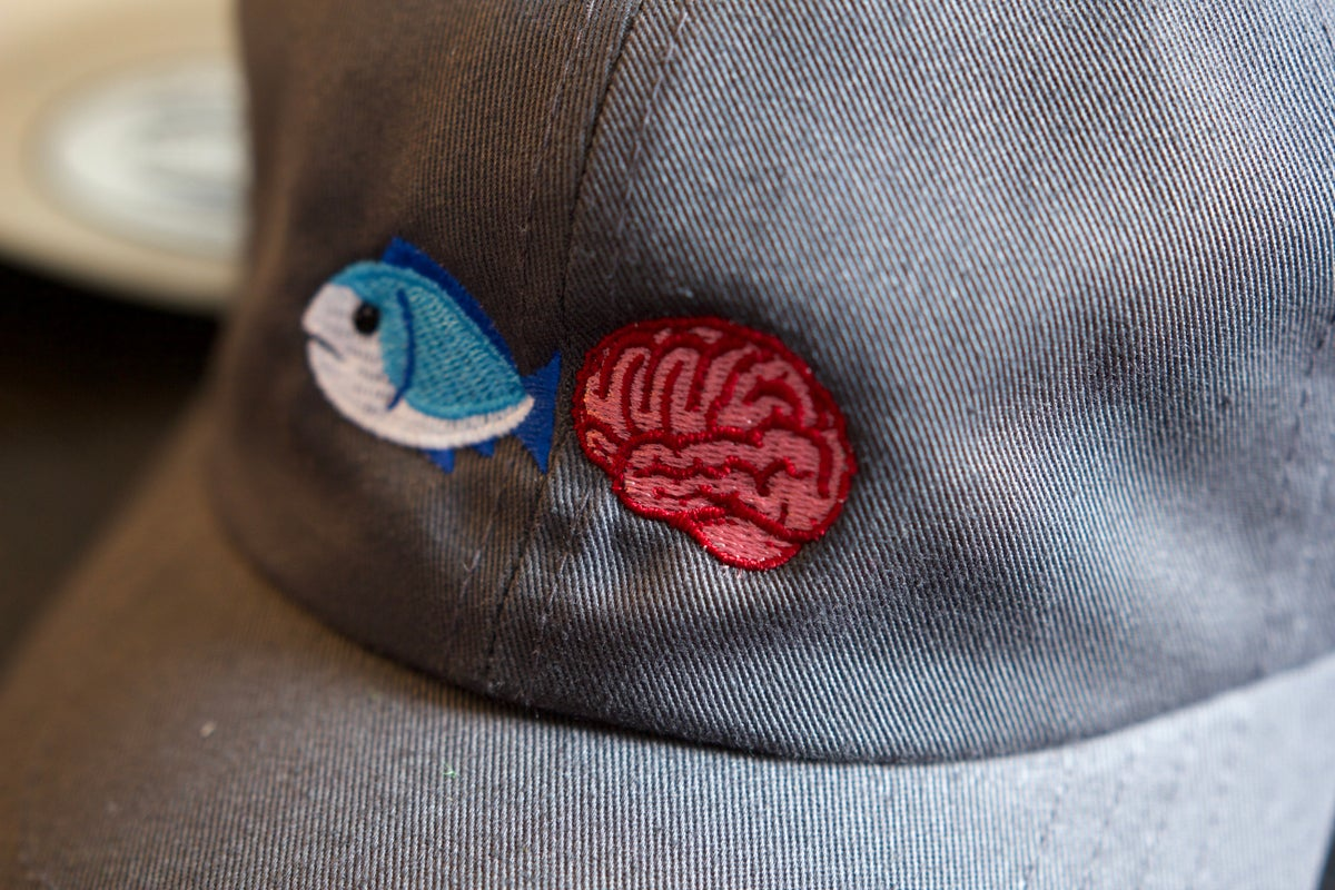 Image of Embroidered Fish Brain Dad Hat