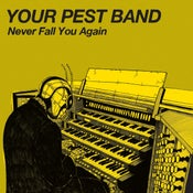 Image of Your Pest Band - Never Fall You Again  7""