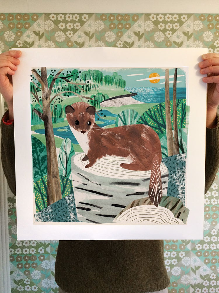 Image of Porthluney Stoat Print