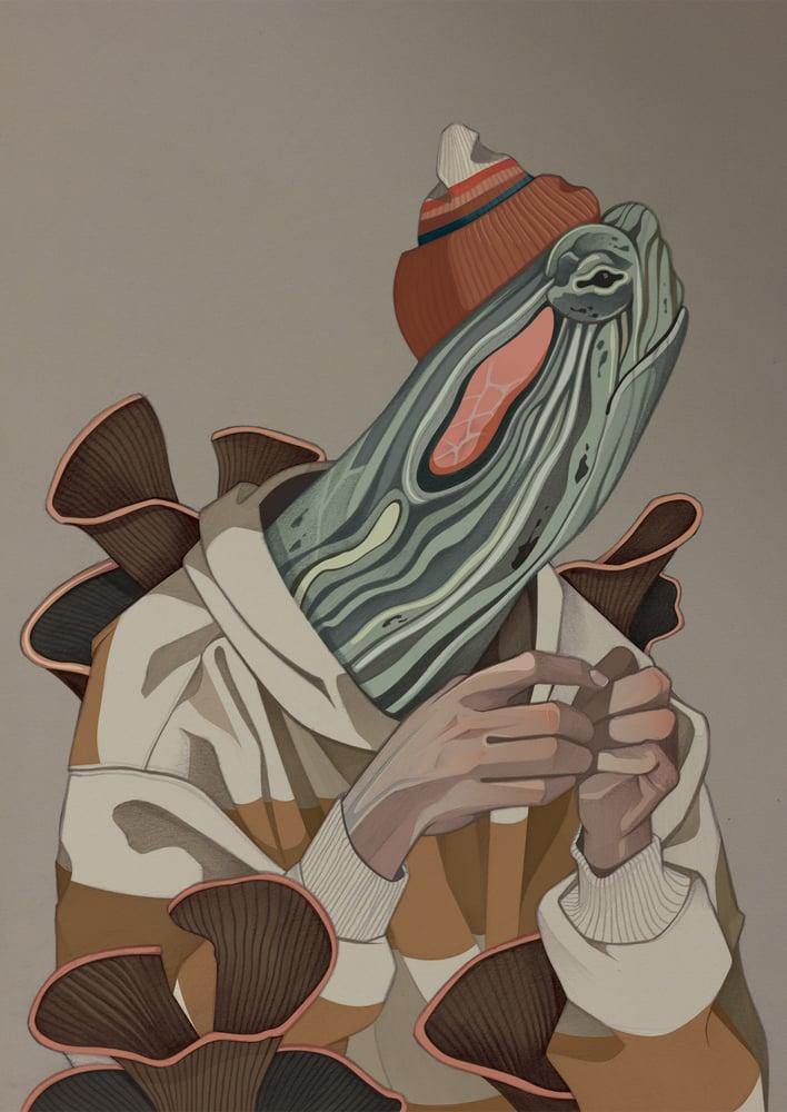 Image of Tortuga y más ilustraciones