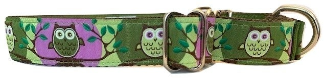 Owl - Martingale Dog Collar