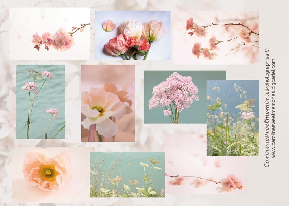 Image of Lot de 10 mini cartes {Spring}