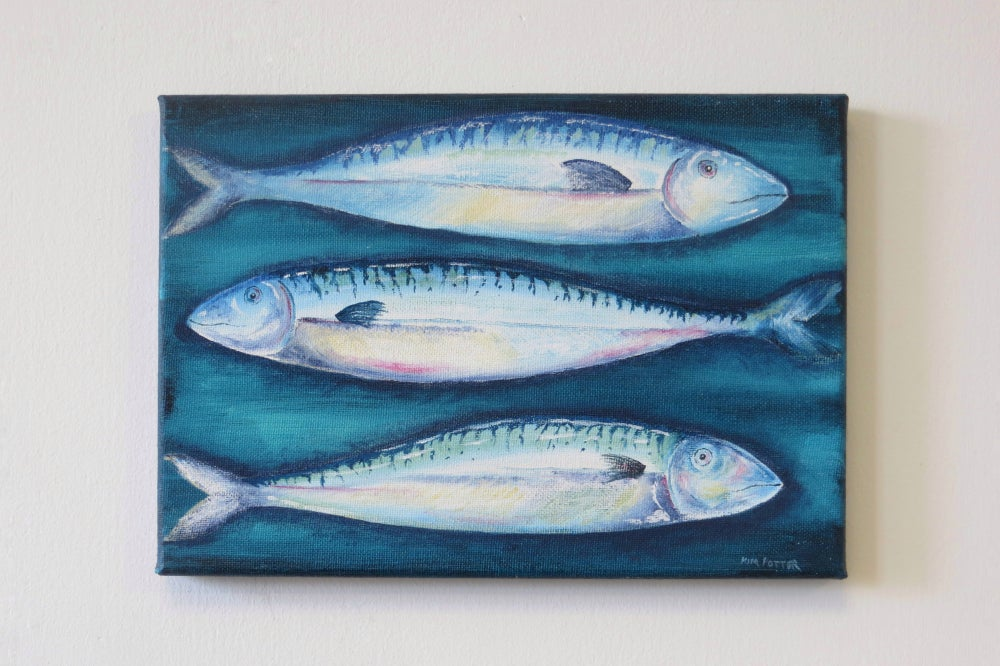 Image of A trio of Mackerel