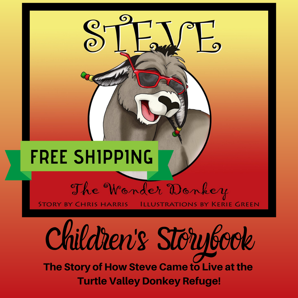Image of Steve the Wonder Donkey