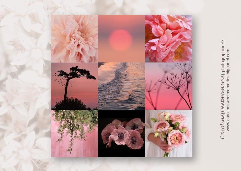 Image of Moodboard ROSE