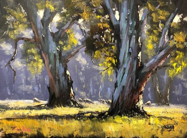 Image of Sunny Morning, Wangaratta